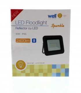 Proiector LED 30W 2400lm IP65 4000K alb mediu carcasa aluminiu negru Well